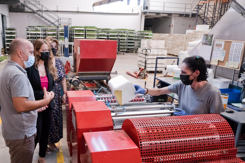 La Junta respalda el relevo generacional de la empresa de la Costa Tropical Saliplant